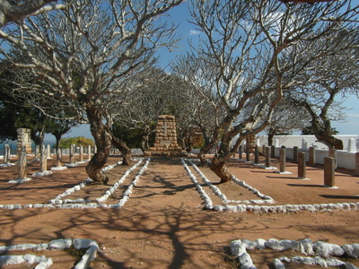 Skeletal trees at Pemba Cemetery - Keith Patience