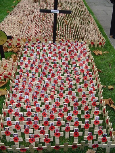 Iraq casualties at the field of Honour at Westminster